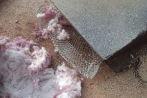 What's Lurking In Your Dryer Vent?